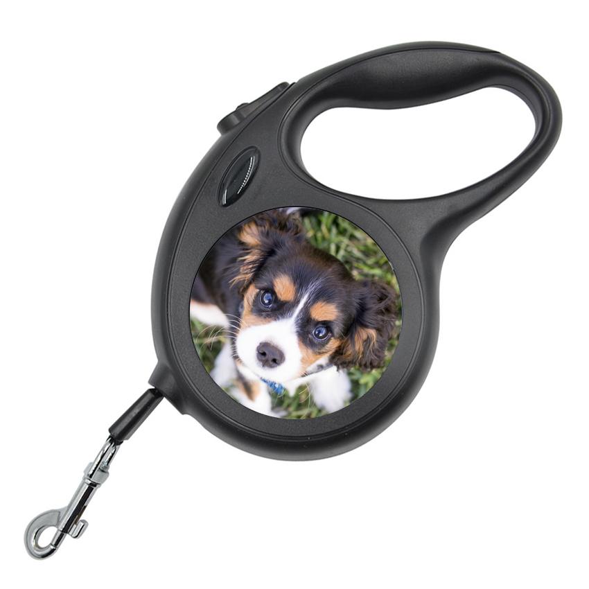 Кучешки повод